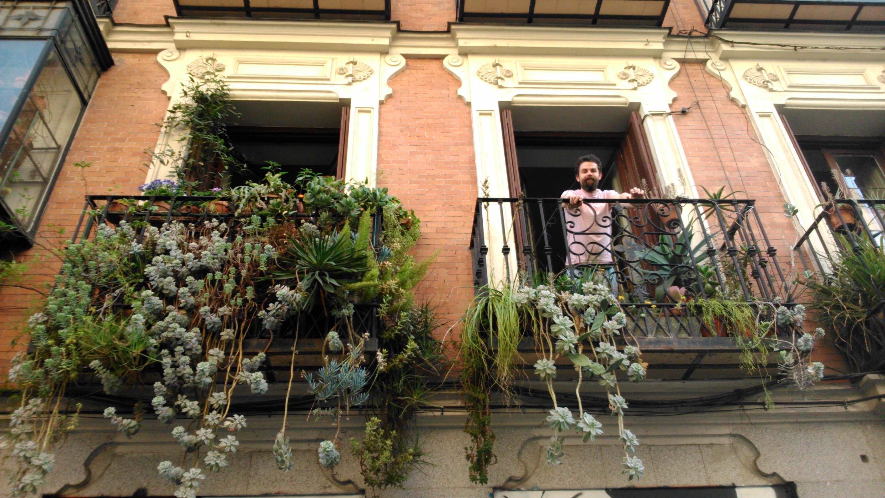 Los jardines colgantes de dean rebrota malasa a for Jardines verticales en balcones
