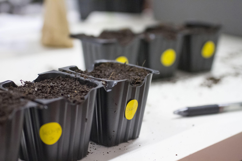 Primer Taller De Huerta Ecol Gica En Balcones Y Terrazas Rebrota  ~ Como Hacer Una Huerta Ecologica