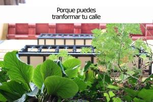 Concurso_balcones_madrid_rebrota_malasaña_madrid_8