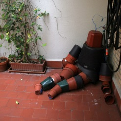 macetaamoroso_el_patio_rebrota_rojomenta_2