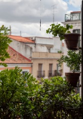 Nick_rebrota_malasana_rojomenta_concurso_balcones_madrid_4