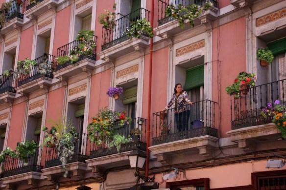 Rebrota_Malasaña_balcones_plantas_madrid_rojomenta