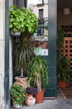 El Vegetariano, c/ Marques de Santa Ana 34 www.elrestaurantevegetariano.com