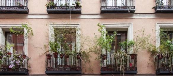 casa_encendida_jardineria_rojomenta